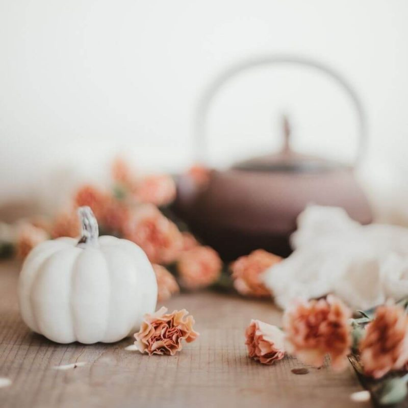 Here are our favourite fall things on Etsy! Browse through for DIY kits, wall decals, pumpkin scented candles, a tiny skull planter, and more! #etsyfalldecor #falletsyideas #etsyfallshirts #decoratingforfall