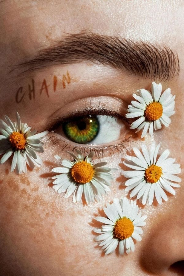 source - claireluxtonart/ What's sweeter than a daisy flower? Aren't they lovely? Looking to be inspired by some serious daisy aesthetic? Here's a collection of our favourite photos! #daisyaesthetic #daisyflower #flowersaesthetic #daisyinspiration #daisies #daisy #tulipandsage