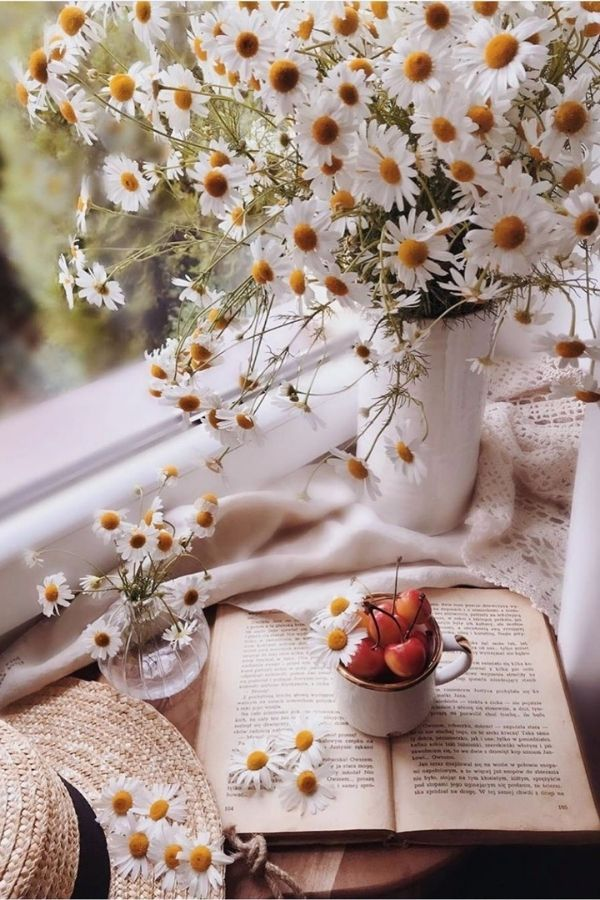 source - kcyang688.tumblr.com/ What's sweeter than a daisy flower? Aren't they lovely? Looking to be inspired by some serious daisy aesthetic? Here's a collection of our favourite photos! #daisyaesthetic #daisyflower #flowersaesthetic #daisyinspiration #daisies #daisy #tulipandsage