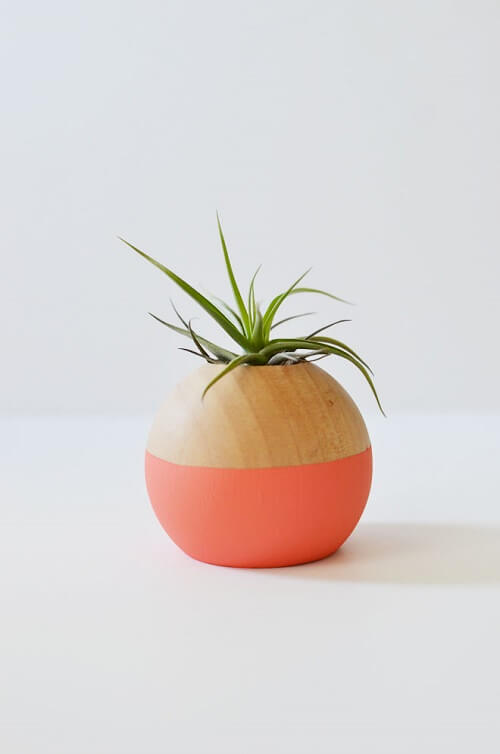 source - mycakies.com/ Looking for some summer DIY projects to try? Check out 10 of my favourite ones - from adorable plant pots to stylish sun hats, I'm loving them all! #summerdiy #summerdiyprojects #summerdiycrafts #summerdiydecor #diysummerdecor #diysummercrafts #tulipandsage