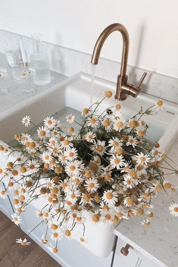source - weheartit.com/ What's sweeter than a daisy flower? Aren't they lovely? Looking to be inspired by some serious daisy aesthetic? Here's a collection of our favourite photos! #daisyaesthetic #daisyflower #flowersaesthetic #daisyinspiration #daisies #daisy #tulipandsage